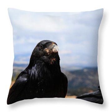Raven Portrait Throw Pillow by Donald Fink