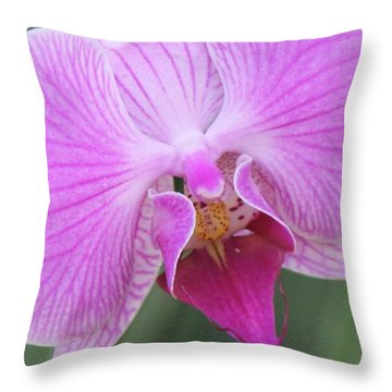 Ravenous Orchid Throw Pillow by Bill Woodstock