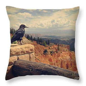 Raven's Eye View Throw Pillow
