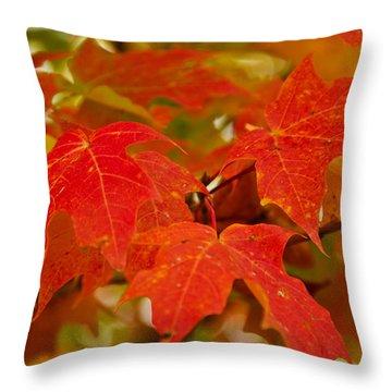 Ravishing Fall Throw Pillow