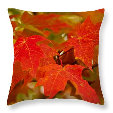 Ravishing Fall Throw Pillow