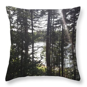 Ray O Light Throw Pillow by Melissa McCrann