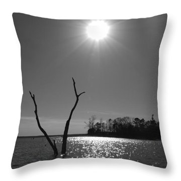 Rayburn Sky Throw Pillow