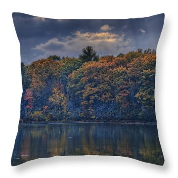 Rayons D'automne Throw Pillow