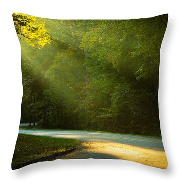 Rays Throw Pillow by David Cote