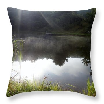 Rays Of Sunshine Throw Pillow by Michael Porchik