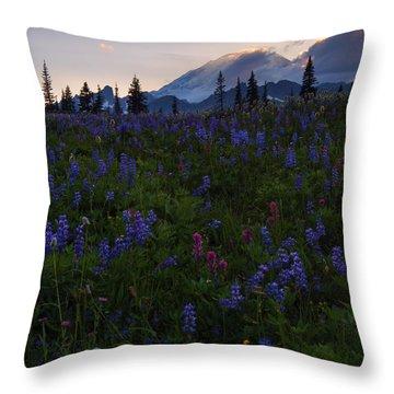 Rays Over Rainier Throw Pillow by Mike  Dawson