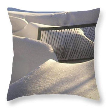 Throw Pillow featuring the photograph Razor Edge by R  Allen Swezey