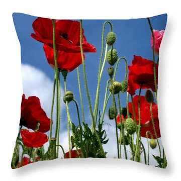 Reach For The Sky Throw Pillow by Baggieoldboy