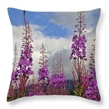 Throw Pillow featuring the photograph Reach For The Sky by Cathy Mahnke