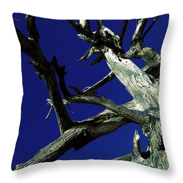 Throw Pillow featuring the photograph Reach For The Sky by Janice Westerberg