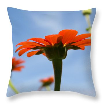 Reach For The Sky Throw Pillow by Neal Eslinger