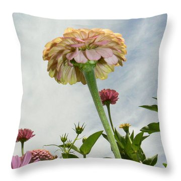 Reach Throw Pillow by Lin Haring