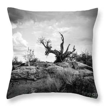 Reaching Bw Throw Pillow by Cheryl McClure