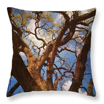 Picnic Under The Giant Oak Tree Throw Pillow