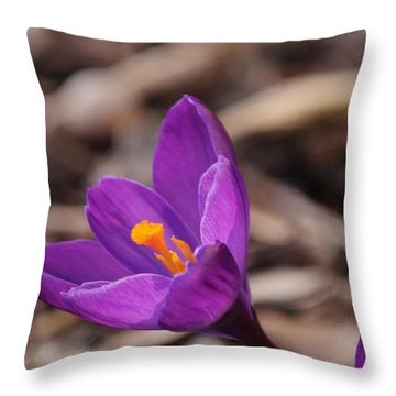 Reaching For The Sun Throw Pillow by Lara Ellis