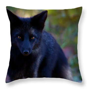 Throw Pillow featuring the photograph Reading The Menu by Jim Garrison
