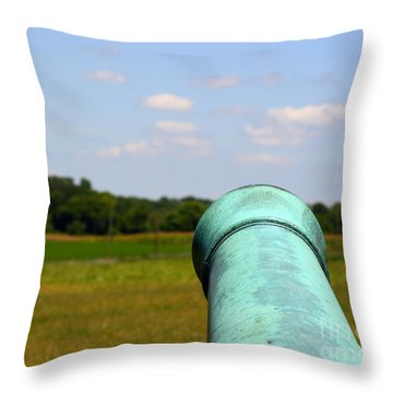 Ready Aim Fire Throw Pillow by Patti Whitten