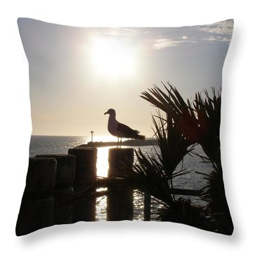 Ready For Sunset Throw Pillow by Bev Conover