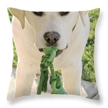 Ready For The Holidays Again Throw Pillow by Suzanne Oesterling