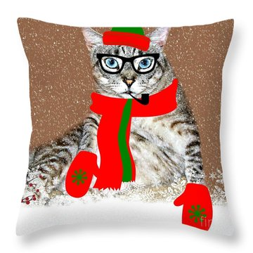 Ready For Winter Throw Pillow