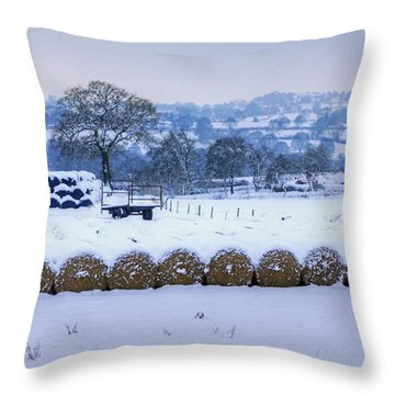 Ready For Winter Throw Pillow by David Birchall