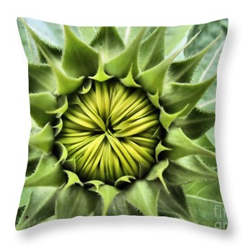 Ready Or Not Here I Come Throw Pillow
