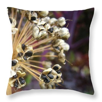 Ready To Disperse Throw Pillow by Cheryl Hoyle