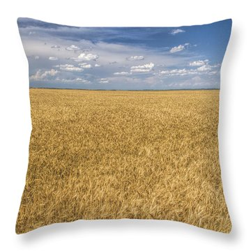 Throw Pillow featuring the photograph Ready To Harvest by Rob Graham
