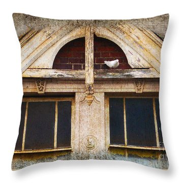 Ready To Nest Throw Pillow by Cynthia Lagoudakis