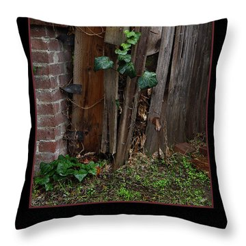 Reclaim No.3 Throw Pillow by Peter Piatt