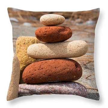 Reclaimed Life Throw Pillow by Barbara McMahon