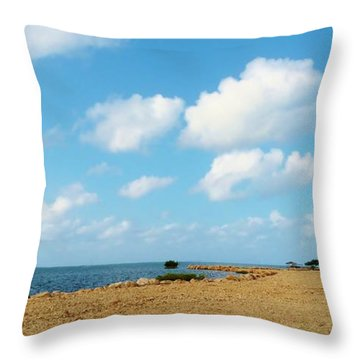Throw Pillow featuring the photograph Reclamation 8 by Amar Sheow