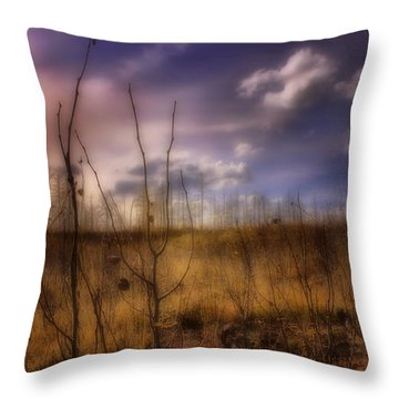 Throw Pillow featuring the photograph Recovery by Ellen Heaverlo