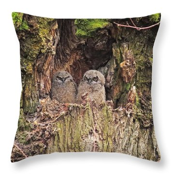 Throw Pillow featuring the photograph Recycling The Old Maple Tree by I'ina Van Lawick