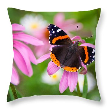 Red Admiral Butterfly Throw Pillow by Patti Deters