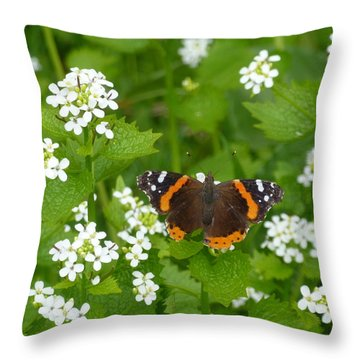 Throw Pillow featuring the photograph Red Admirals by Lingfai Leung