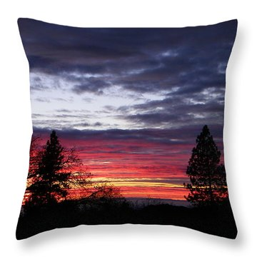 Red And Blue Throw Pillow by Tom Mansfield
