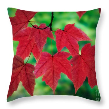 Red And Green Throw Pillow by Inge Johnsson