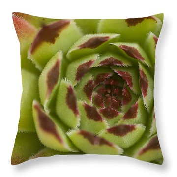 Red And Green Throw Pillow by Trevor Chriss