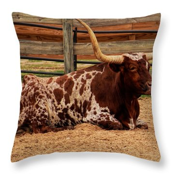 Red And White Texas Longhorn Throw Pillow