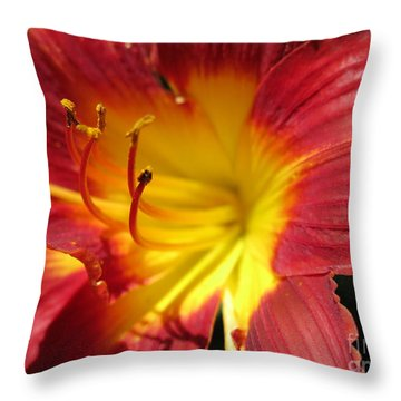 Red And Yellow Day Lily Throw Pillow