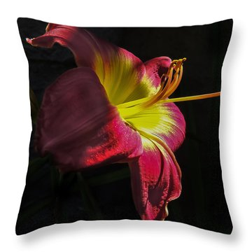 Red And Yellow Lily Throw Pillow