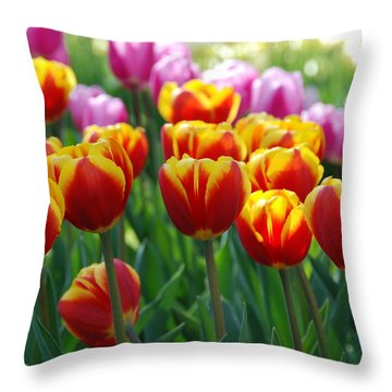 Throw Pillow featuring the photograph Red And Yellow Tulips  by Allen Beatty