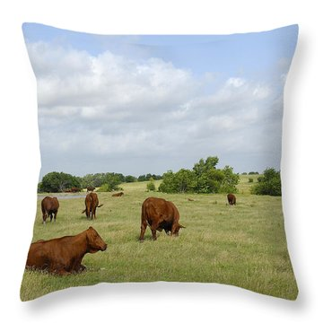 Throw Pillow featuring the photograph Red Angus Cattle by Charles Beeler