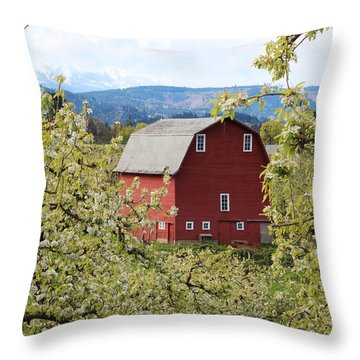 Throw Pillow featuring the photograph Red Barn And Apple Blossoms by Patricia Babbitt