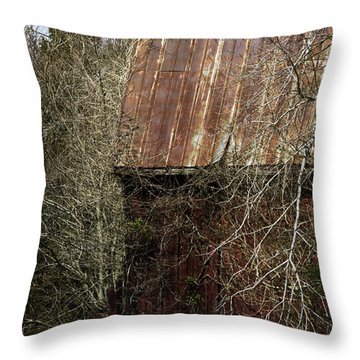 Throw Pillow featuring the photograph Red Barn - Dares Beach Road by Rebecca Sherman