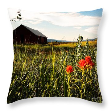 Throw Pillow featuring the photograph Red Barn by Meghan at FireBonnet Art