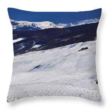 Red Barn Throw Pillow by Skip Hunt