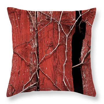 Throw Pillow featuring the photograph Red Barn Wood With Dried Vines by Rebecca Sherman